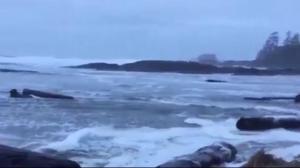 Parks Canada issues extreme wave hazard warning along B.C. coast
