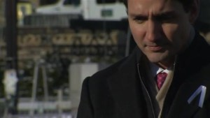 Justin Trudeau lays down white rose in honour of victims of École Polytechnique