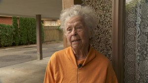Senior fights back against purse snatcher