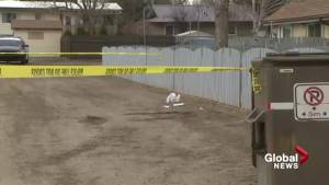 Lethbridge woman sentenced to just over 2 years in west side stabbing (01:37)
