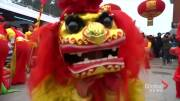 Play video: Lion and dragon dances for Lunar New Year in China, Malaysia, and Philippines