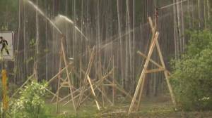 Sprinklers and other wildfire mitigation tools used in High Level