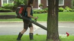 Beaconsfield residents irked by handling of leaf blower ban