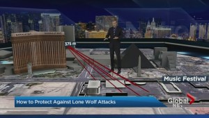 Lone wolf attackers targeting crowds