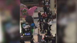 Easter bunny fights dad at New Jersey mall