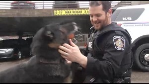 Police dog retiring after seven years of service