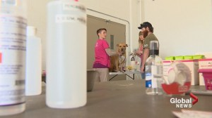Veterinarians provide free care for struggling pet owners