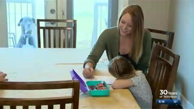 Saskatoon mom who created bucket list after terminal cancer diagnosis passes away