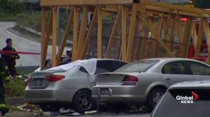 Seattle crane collapse leaves 4 dead, 3 hurt, 5 cars crushed: fire department