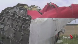 Malaysian Flight MH17 is shot down as it flys over the Ukraine