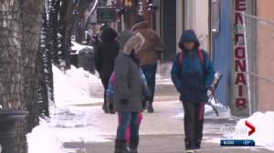 Edmonton begins to emerge from February deep freeze