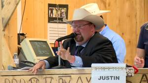 Livestock auctioneers compete for international championship title