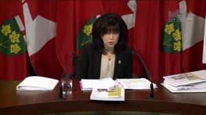 Auditor General: Ontarians pay $30 million a year more for Hydro (01:24)