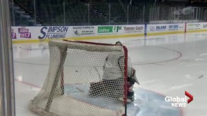 Hurricanes goaltender relishing opportunity with hometown team