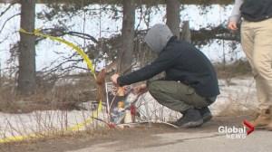 Growing memorial for victim of New Brunswick hit and run