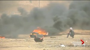 Gaza protesters shot during border demonstration
