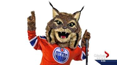 Edmonton Oilers introduce Hunter the mascot | Globalnews ca