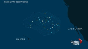 An explainer animation on the Great Pacific Garbage Patch