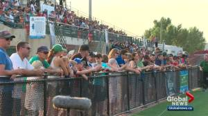 FC Edmonton sees attendance numbers swell