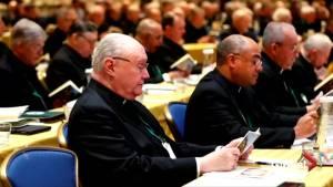 Pope asks U.S. bishops to delay sex abuse reform vote