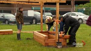 Common Roots Urban Farm attempts to find common ground for new home (01:47)
