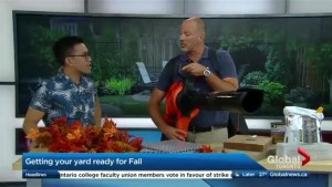 Getting your outdoor space ready for Fall weather