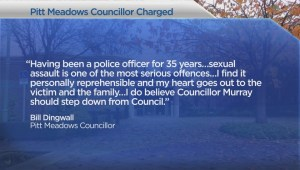 Pitt Meadows councillor charges