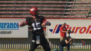 Battle to back up Bo underway at Calgary Stampeders' training camp (01:41)