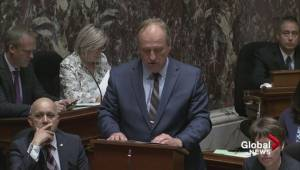 B.C. Green Party introduces legislation to ban conversion therapy
