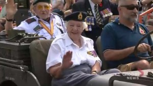 Hundreds honour war veterans at Warriors' Day Parade