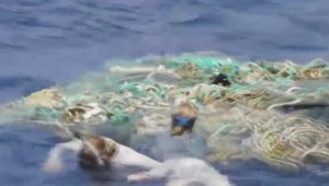 Crew studying Great Pacific Garbage Patch returns