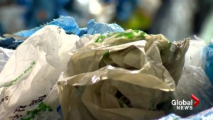 Officials say provincial leaders forced Moncton's hand in possible plastic bag ban