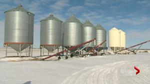 Feds hold roundtable discussion in Saskatoon regarding grain shipping season