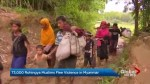 Mass exodus of Rohingya from Myanmar spiraling into humanitarian disaster