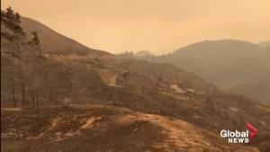 'It's snowing ash': first responder surveys scorched landscape near Malibu