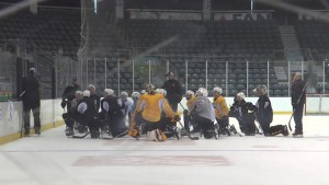 The Kingston Frontenacs look forward to the OHL season