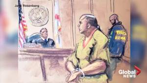 U.S. mail bomb suspect appears in court