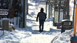 Southern Ontario digging out after winter storm