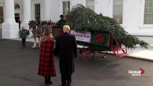 President Trump, First Lady Melania receive White House Christmas tree