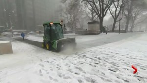 New York turns white as latest nor'easter hits U.S. East Coast