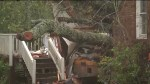 Hurricane Florence: Neighbour of mother, child killed after during storm expresses disbelief over incident