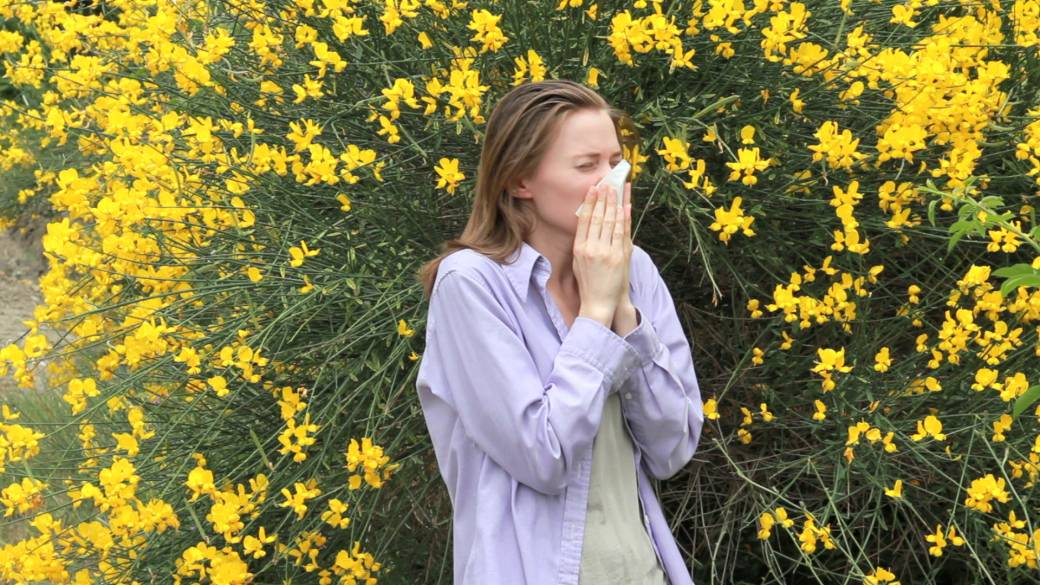 what allergies in spring