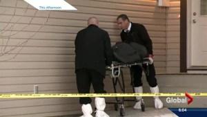 Mass murder: Lakeview scene