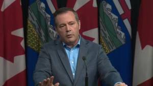 Kenney could make 'attacks on Alberta' a federal election issue