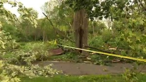NDG Park reopens after violent storm