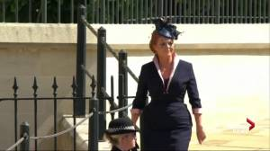 Royal Wedding: Sarah, Duchess of York arrives at Windsor Castle