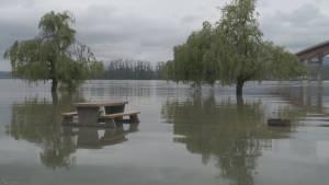 BC Flood: Barnston Island prepares
