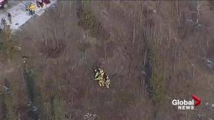 STARS called to single-vehicle rollover down embankment