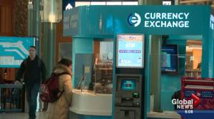 Travellers think twice as Canadian dollar plunges