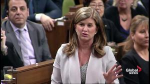 Rona Ambrose suggests Sajjan be removed from post